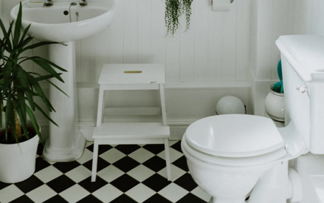 how to unblock a toilet